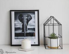 7 ideas para decorar con suculentas [Summer edition]   Decorar tu casa es facilisimo.com