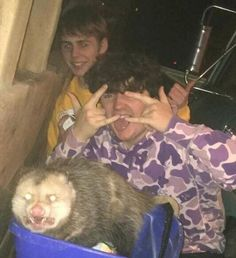 Me and my cousins pet possum, im in yellow lol Memes Fr, Stupid Memes, Funny Memes, Arte Bob Marley, Reaction Pictures, Funny Pictures, Draw The Squad, Opossum, Mood Pics