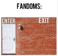 First rule of all fandoms: You do not leave the fandom. Second rule of all fandoms: You DO NOT leave the fandom. Fandoms Unite, Memes Historia, Fangirl Problems, All Meme, Book Memes, Book Fandoms, Maze Runner, Book Nerd, K Pop
