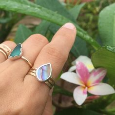Big sis is getting herself an abalone stacker ring & my plumerias couldn't be happier.  #abalone #paua #iridescent #shell #mixedmetal #rings
