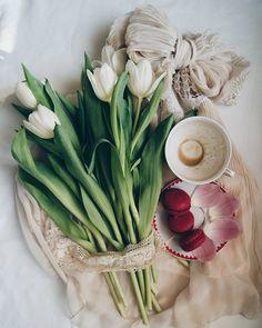 Good morning to you all ☤ #morningslikethese