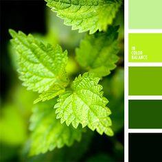 Цветовая палитра №1494 | IN COLOR BALANCE