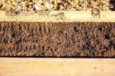 Raised gardens are amazing, but finding the right soil can be tricky. Here's how to find the right soil combination for the garden box in your garden.