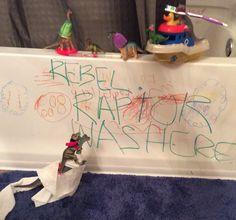 Rebel Raptor