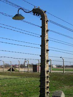 Barbed wire in Auschwitz-Birkenau
