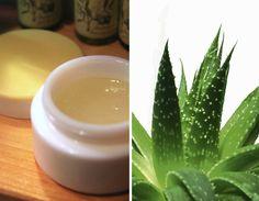 Gel dAloe Vera fatto in casa: rimedio naturale per pelle e capelli