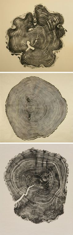 Honey Locust, Southport Oak, & Willow ~ woodcuts relief prints by Bryan Nash Gill