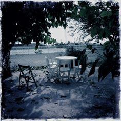 RAMÓN GRAU. Director of Photography: Resultados de la búsqueda de horta marco