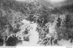 Gallipoli 1915 August - Light Horse Brigade trenches / Popes Hill