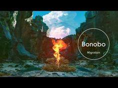 Bonobo : Migration - YouTube