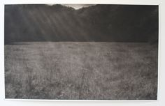 Field (Anything to bring you back) - Renie Spoelstra Your Back, Monochrome, Art Drawings, Bring It On, Artwork, Work Of Art, Monochrome Painting, Auguste Rodin Artwork, Artworks