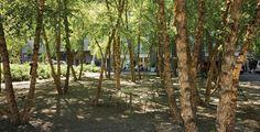 Village of Yorkville Park