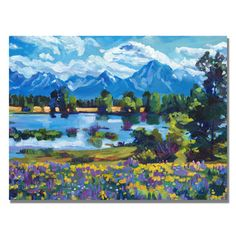 David Lloyd Glover 'Wildflower Valley' Canvas Art | Overstock™ Shopping - Top Rated Trademark Fine Art Canvas