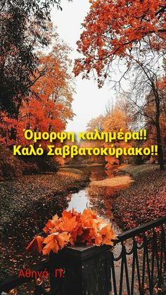 Enjoy Your Weekend, Nice Photos, Good Morning Good Night, Wonders Of The World, In This Moment, Day, Image, Beautiful, Cute Photos
