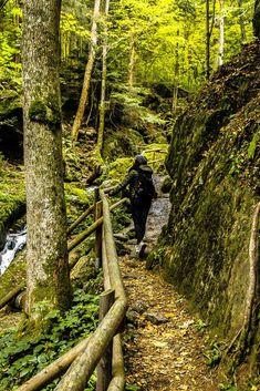 Ysperklamm - Ein besonderes Ausflugsziel in Niederösterreich! Visit Austria, Central Europe, Wanderlust Travel, Alps, Where To Go, Amazing Photography, Traveling, Hotels, Outdoor