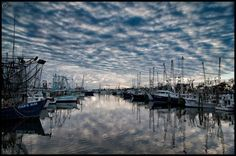 Great reflections of harbor by Alex North