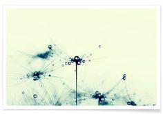 Wandbilder online kaufen | JUNIQE