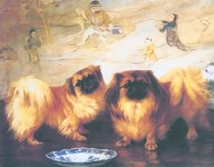 They had a pekinese named Sue:)