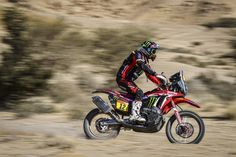 Rally Raid, Motorcycle, Sports, Hs Sports, Motorcycles, Sport, Motorbikes, Choppers