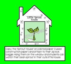 Copy on colored paper and attach to zip-lock. Hang these cute little sprout houses on the window so your students can watch their seed sprout before their eyes!