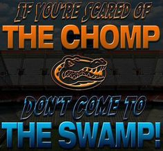 ACC football betting lines, point spreads released for Week 1 - Gamedayr : Gamedayr Florida Gators Football, Gator Football, College Football, Football Things, College Sport, Florida Gators Wallpaper, Gator Game, Tim Tebow, Country Girl Quotes