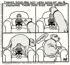 Things Dogs Are Not Very Good At, No. 4