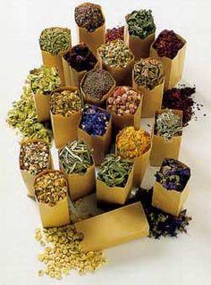 Самые лучшие цветочные и травяные чаи - Perchinka63