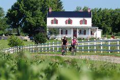 #iledorleans #electricbikes #bikes #scooters #hybridbikes #quebecregion #iledorleans #tourism #tours #fun #outdoors #bikes #quebecregion #quebecoriginal #quebeccity Chute Montmorency, Chateau Frontenac, Le Petit Champlain, Scooters, Tours, Beaux Villages, Canada, Good Customer Service, Quebec City