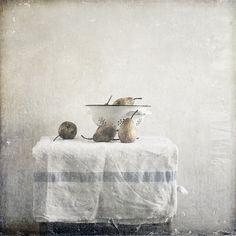 Paul Grand flickr
