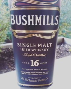 Smooth little fellow. // #whiskey #whisky #ireland #irish #eire #irishwhiskey #whiskeyporn #whiskygram #singlemalt #dram #16years #blogger #cologne #bushmills #picoftheday #photooftheday #tasty #foodporn #foodie #drinks