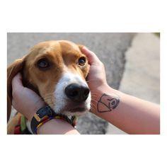 Tattoo I designed of my beagle, Copper ❤️