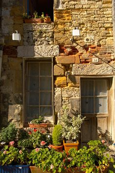 Old stone house front with pots of flowers. Honfleur, Normandy, France.