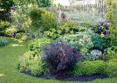 Vaistolla ja tunteella suunniteltu puutarha