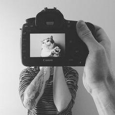 """El fotógrafo canadiense Zach Rose, ha dado un giro al concepto de comparar a las mascotas con sus dueños en su serie """"Petheadz"""". - Fuente: Zona Cinco Escuela de Cine y Fotografía"""