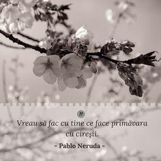 Citat | Primavara | copaci infloriti Pablo Neruda, Poetry, Reading, Face, Happy, Quotes, Books, Movie Posters, Quotations