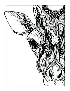 New Coloring Book For A Great Low Price Over 60 Pages with Beautiful Designs.   Adult Coloring Book : Stress Relieving Designs Animals, Mandalas, Flowers, Paisley Patterns And So Much More