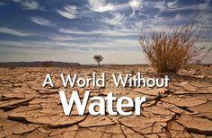 Intr-o zi, corpul elimina 1.8 litri de apa, lipsa hidratarii zilnice conduce la greata, dureri de cap, dureri musculare, stari febrile, ameteli, tulburari neurologice si chiar atac de cord. Ca si cand nu ar fi de ajuns, sub 1% din apa de pe planeta mai este potabila. Procentul este in scadere, iar populatia in crestere.  Apa infestata ne poate imbolnavi. Impreuna putem opri poluarea cu nitrati!