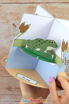 Print out our Frog Life Cycle Craft diorama template and make a fun interactive display. Print out our Frog Life Cycle Craft diorama template and make a fun interactive display. Kids will love making this frog craft and learning about frogs. Science Projects For Kids, Science Experiments Kids, Science For Kids, Art For Kids, Preschool Learning Activities, Preschool Crafts, Toddler Activities, Food Chain Activities, Teaching Ideas