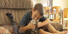 「少年を猛犬から救った猫」にインタビュー:動画