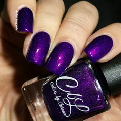 Giant Giraffes In My Yard - Bright, deep grape purple scattered holo with intense pink shimmer. This polish glows! Use a fast dry top coat for shine and to intensify the shimmer. Swatch by @delishiousnails.