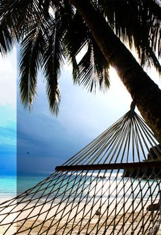 Tenggol Coral Beach Resort 月影湾の度假村 Beach Resorts, Outdoor Furniture, Outdoor Decor, Hammock, Asia, Coral, Home Decor, Hammocks, Vacation Places