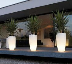Exterior lighting using lighted containers enhances the walkway. eclairage-jardin-pot-de-fleur-lumineux-palmiers