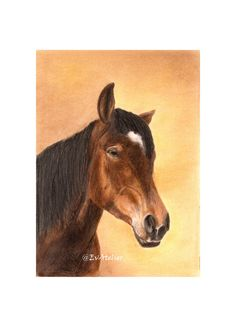 #realistic #wallart by EvAtellier1 https://www.etsy.com/listing/238043874/brown-horse-with-white-star-wall-art