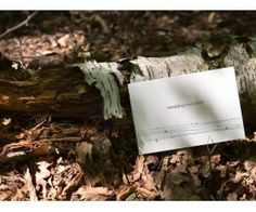 Lovely natural setting for this wedding invite
