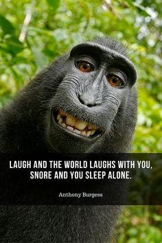 Laugh and the world laughs with you, snore and you sleep alone. #quote #sleep
