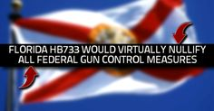 BREAKING: Florida Bill would ban enforcement of federal gun control measures