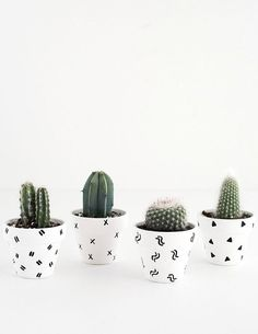 Decorate your dorm room with this DIY cactus project. Back to reality.