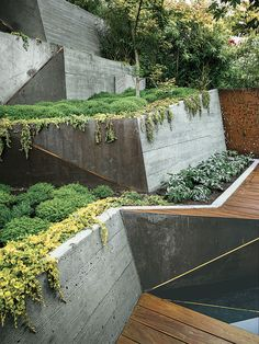 Board-formed concrete retaining walls double as ramps from the deck to the garden's highest point. #concretegarden