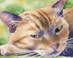 Kunstdruck ORANGE TABBY-Katze signiert von Künstler D J Rogers
