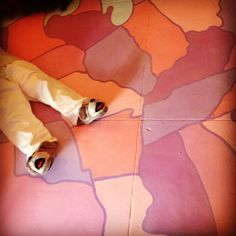 Dog Show - map floor hand painted